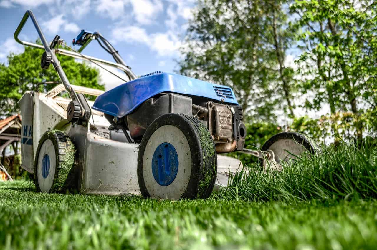 Job Opening: Grounds Maintenance